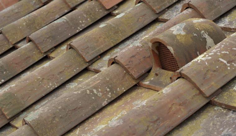 Sangiovese Roof
