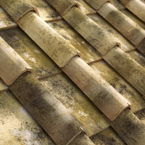 Malvasia Roofing