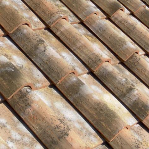 Vernaccia Roofing